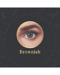 Anesthesia Daily Contact Lenses Brownish