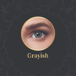 Anesthesia Daily Contact Lenses Grayish